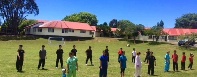 Chin Woo celebrated the lead-up to Christmas at Maungawhau Primary School in Auckland with a student party and a demonstration of their Wushu skills.  The day turned out fine and […]